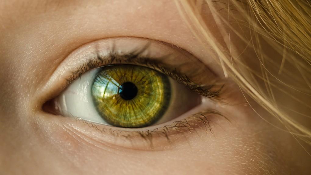 Zielony kolor oczu